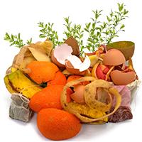 Biomüll - Eierschalen, Grünabfälle, Teebeutel
