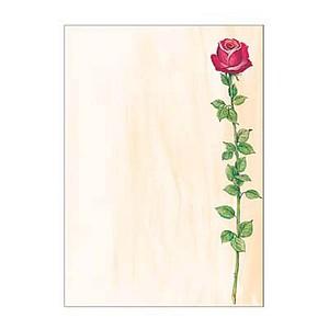 Motivpapier Rose Bloom von sigel